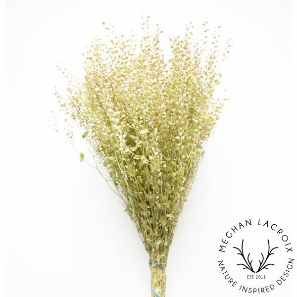 Peppergrass -