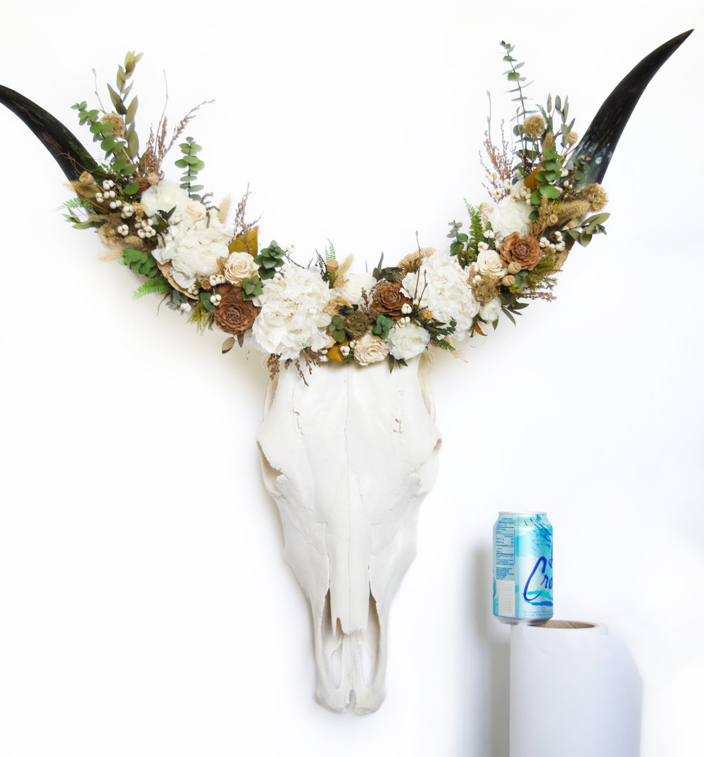 CATTLE / STEER skulls are the same general size and shape. The skulls are quite large with a more rectangular shape when viewed from above.However the horns can be vastly different in size, shape and color depending on the breed. I prefer to use the smaller horns that curve upward to provide a more rounded base for the flowers, although I'm always up for a challenge! All horns are permanently adhered to the skull and are sanded and oiled to bring out the natural colors before flowers are attached  Prices start at $1,800