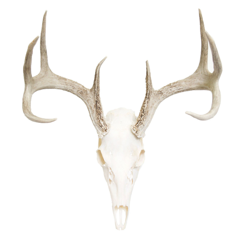 "Large DeerLG-DS-013 - UNIT PRICE $600MSRP $1,20019.5""H x 18"" W"