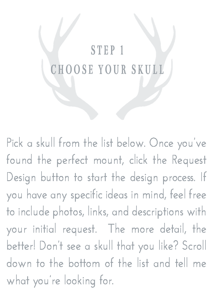 Step 1: Choose Your Skull