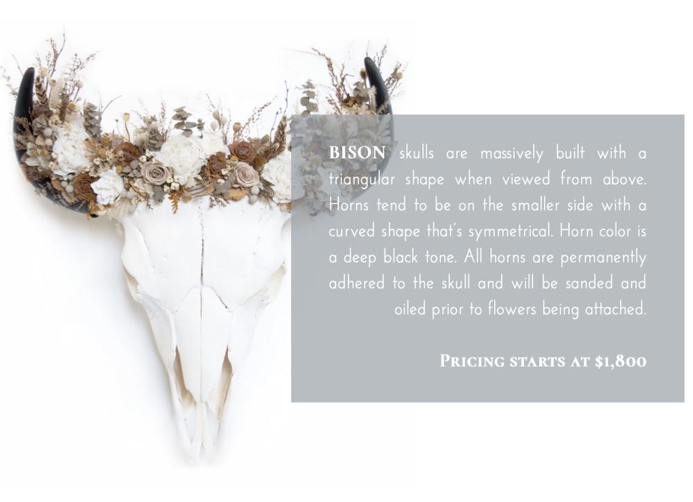 Bison Skull Flower Crown Pricing.png