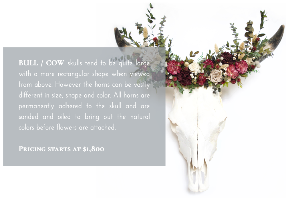 Cow Skull Flower Crown Pricing.png