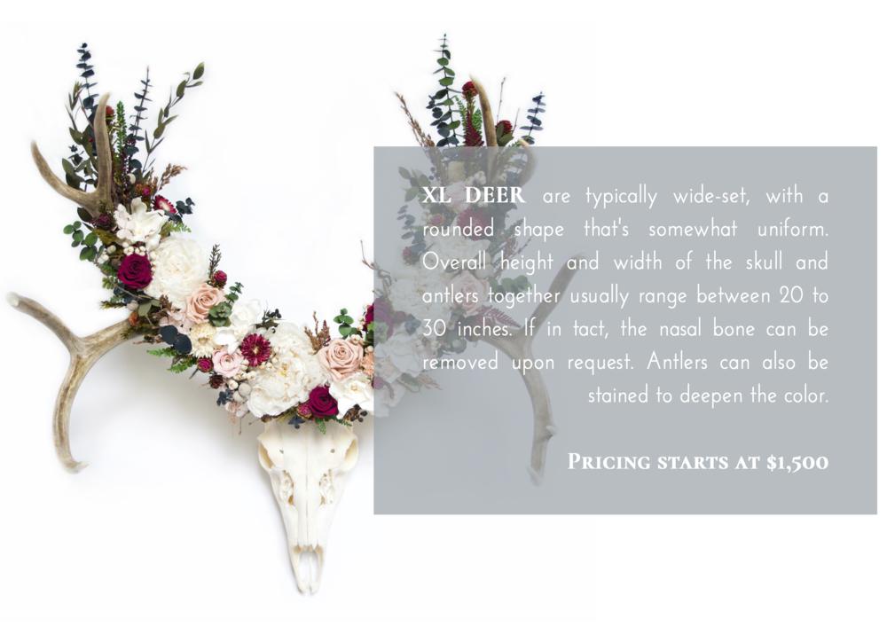 XL Deer Skull Flower Crown Pricing.png