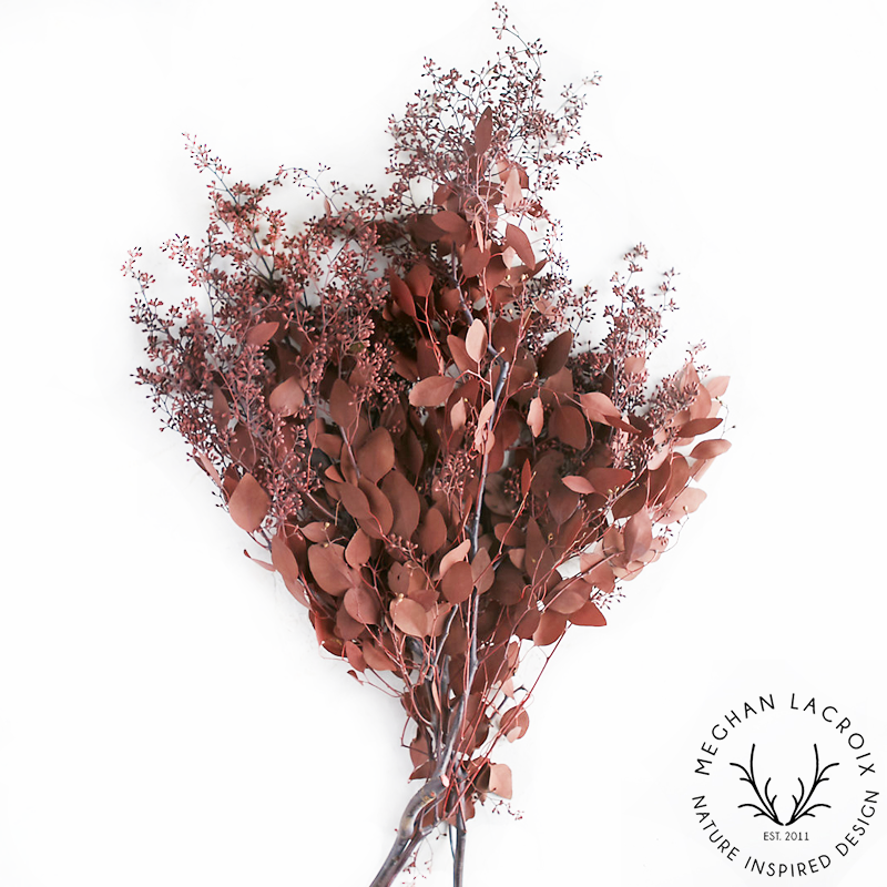 Seeded Eucalyptus - Autumn -