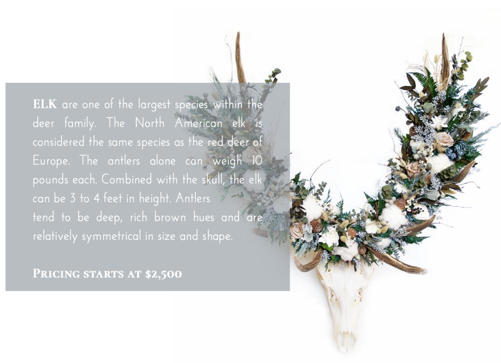 Elk Skull Flower Crown Pricing