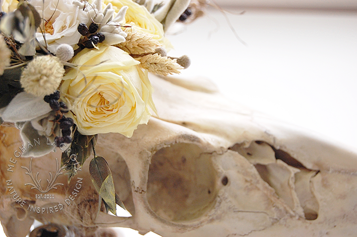 Deer Skull with Handmade Floral Crown by MeghanLaCroix.com