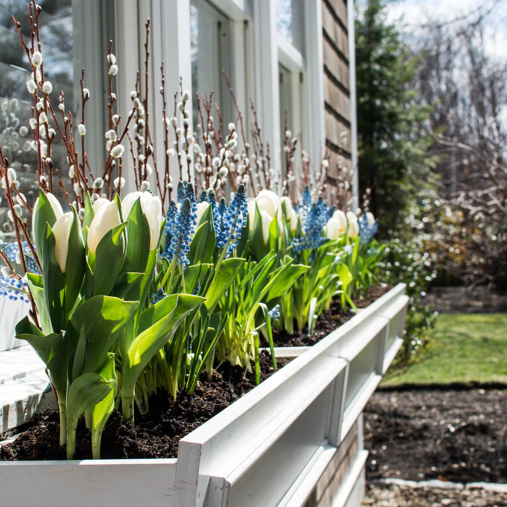 Landscape Designer Newburyport MA