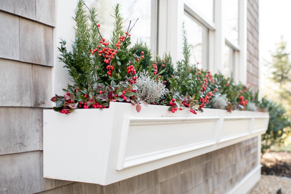 Holiday Windowbox.jpg