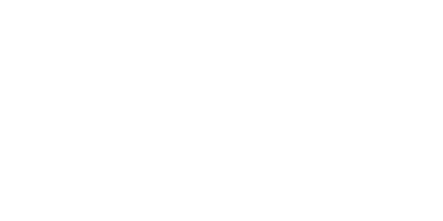 CFO Express International