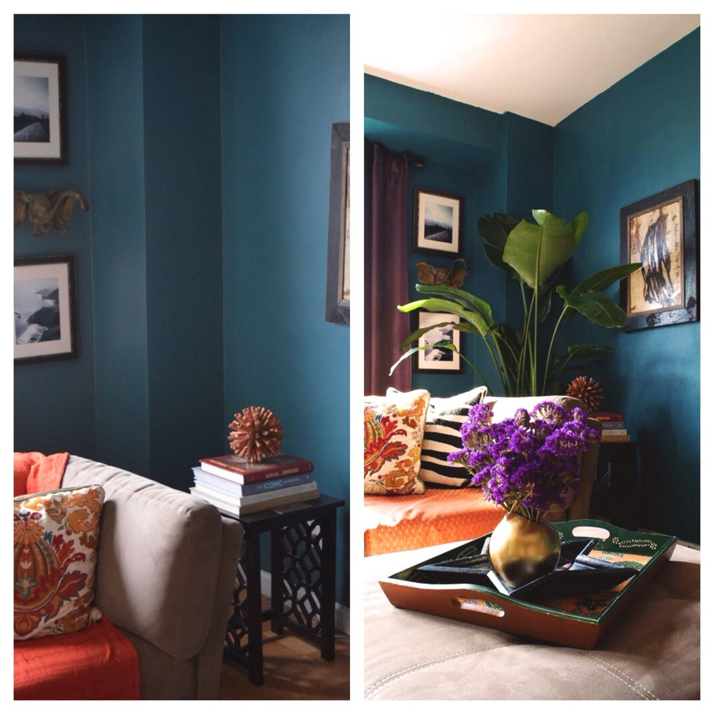 On the left is the sad and emptyliving room cornerand on the right is the perfect plant creating a beautiful corner vignette.
