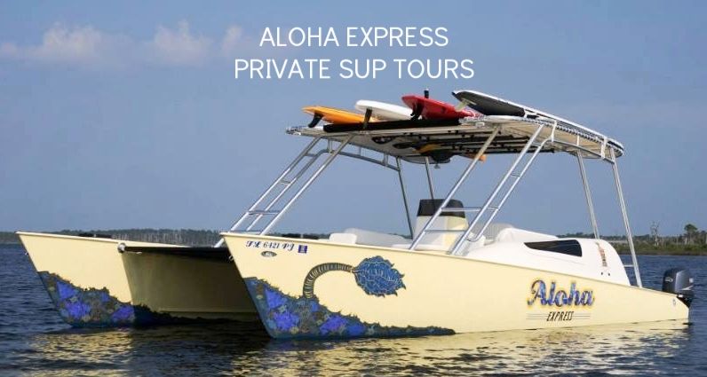 Aloha Express.jpg