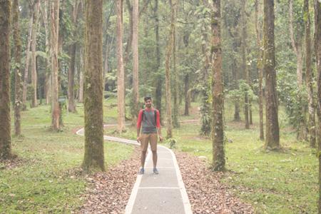 Eka Karya Botanic Garden, Bali