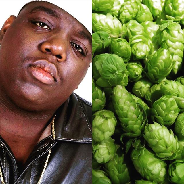 Just because it's summer & we love to drink and share great beer, today's taproom special is: $3 Notorious H.O.P.'s. All day and all night!  #fortcollins #craftbeer #notorioushop #patiobeers #craftipa #brewerylife #fccraftbrew #drinklocalbeer #notoriousbig #hopsonhops #botomlessmimosas