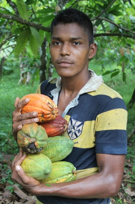 Our cacao is grown on farms where the crafts and science of cacao growing, harvesting, and fermentation are being preserved and carefully refined, leading the way in the world of fine chocolate. Each bean Enna works with carries an exciting story of sustainable and ethical farming and commerce. Pictured: a cacao farmer in La Mosquitia, Honduras.