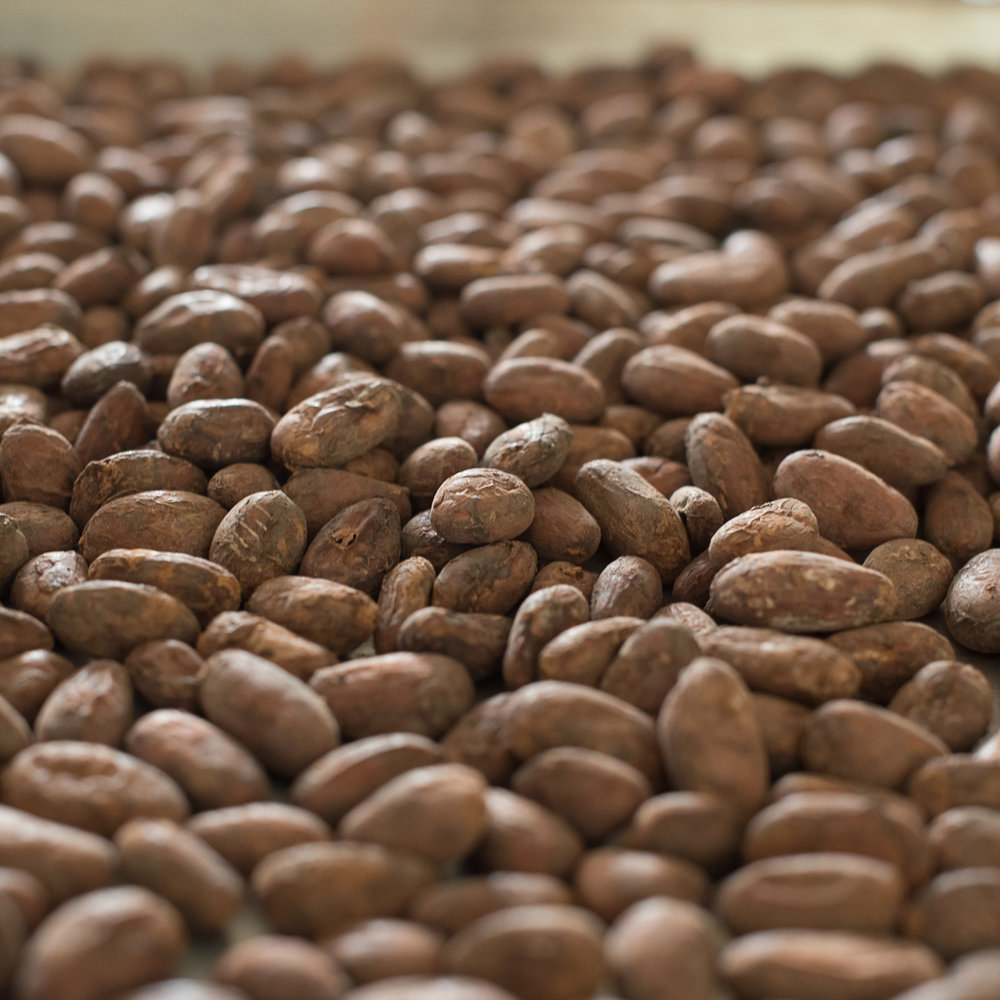 We sort the cacao carefully and then roast it to bring out the best flavors.