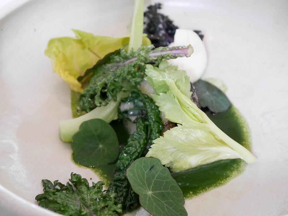 Celeriac and cabbages with cream and nasturtium
