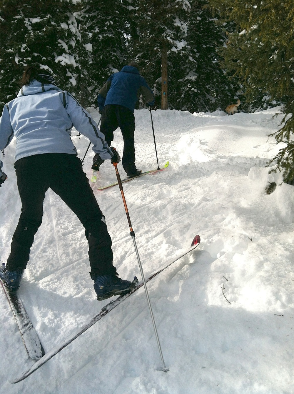 Cross-country skiiers, our sworn enemy