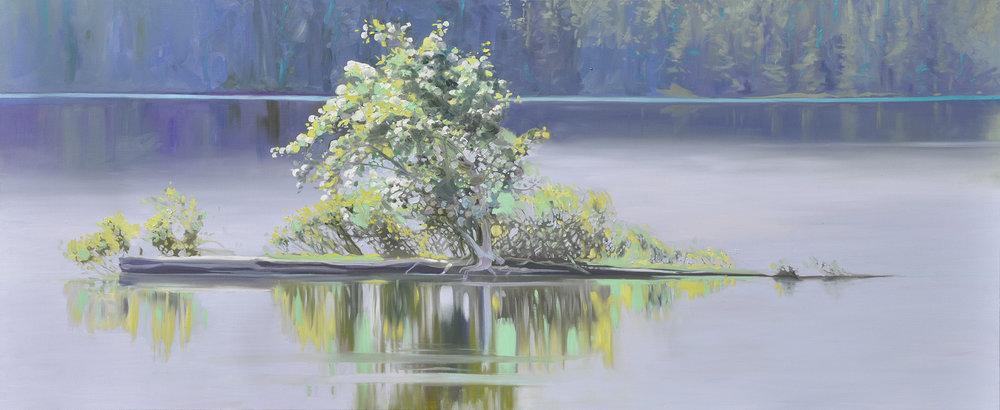 Gunflint Lake Floating Garden