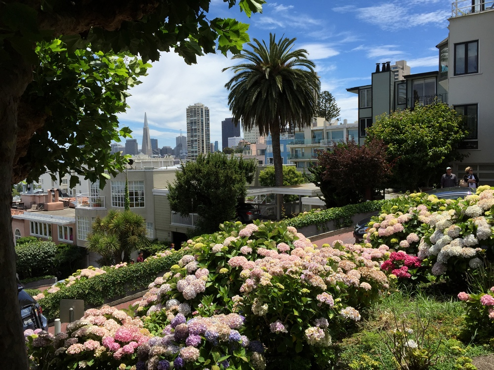 A view of the city from Lombard Street