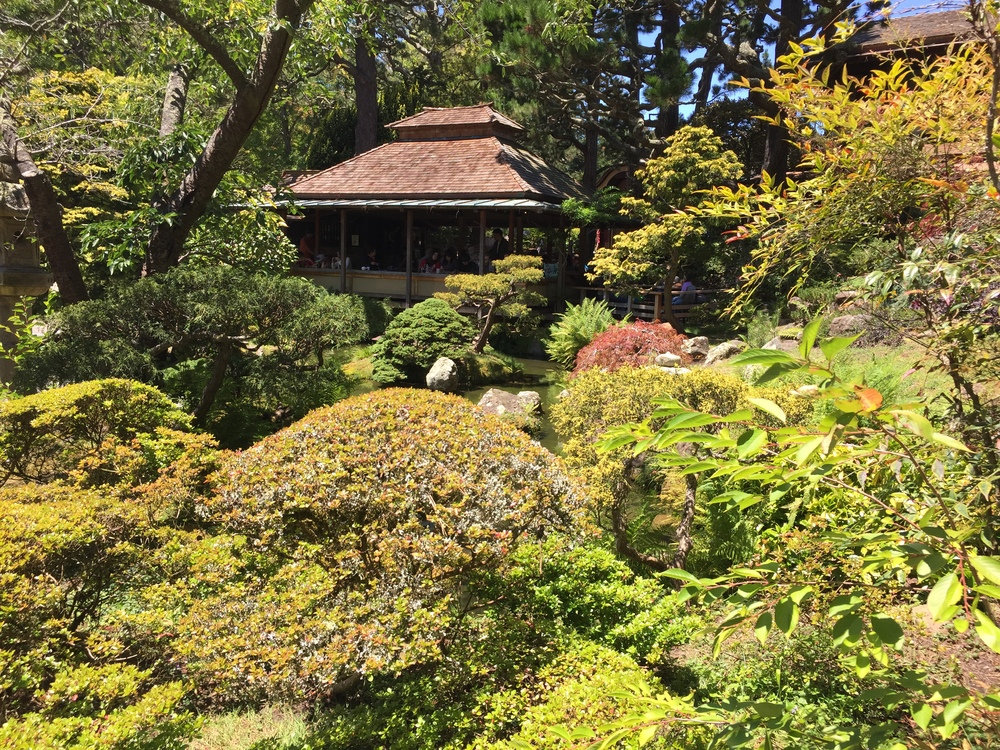 The Japanese Tea Garden offered a peaceful atmosphere and tea house to relax from the core