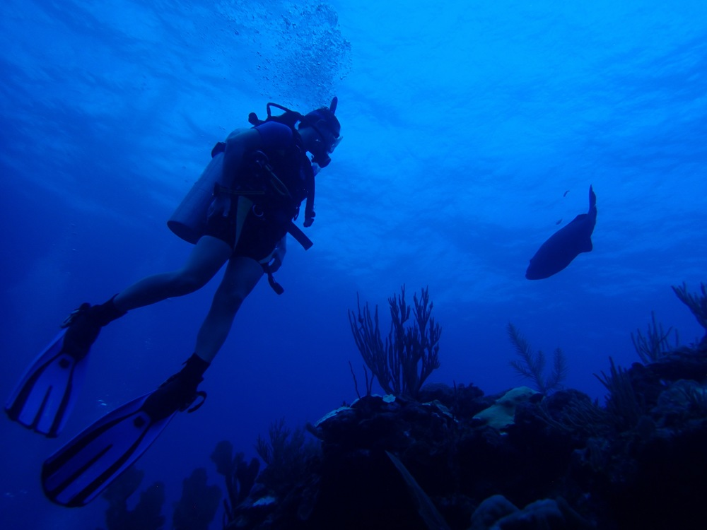Diving in Ambergris Caye, Belize.