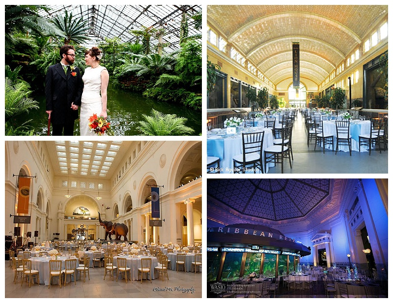 Chicago Wedding Planner Life Science Themed Wedding Venues