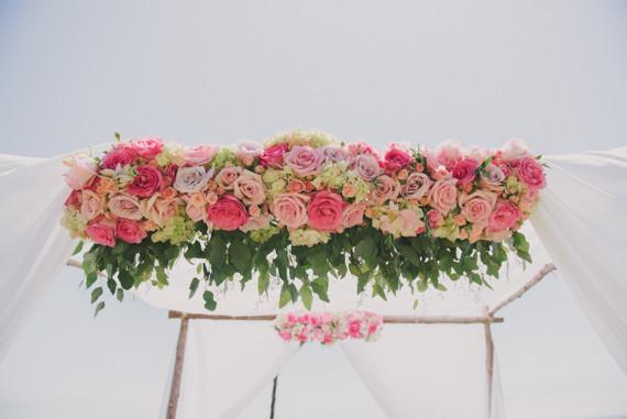 rachel jordan rose canopy.jpg