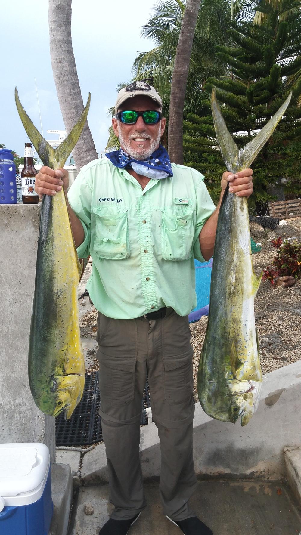 mahi mahi offshore fishing