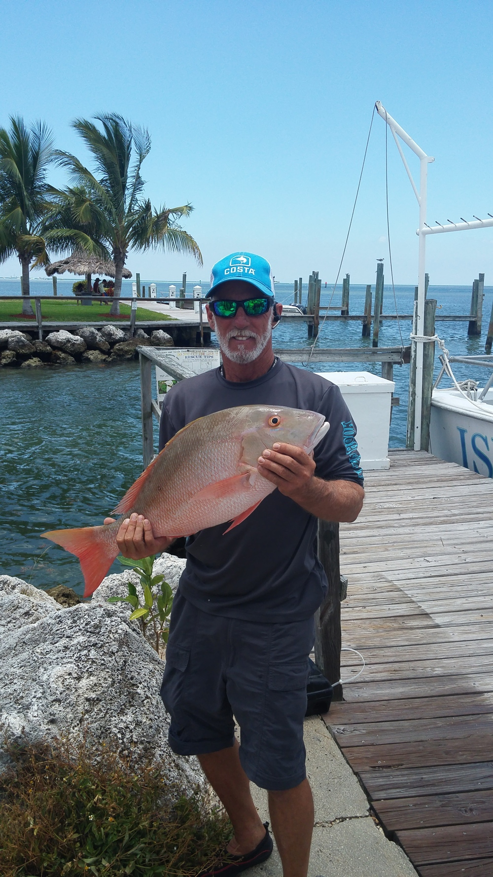 snapper from the reef