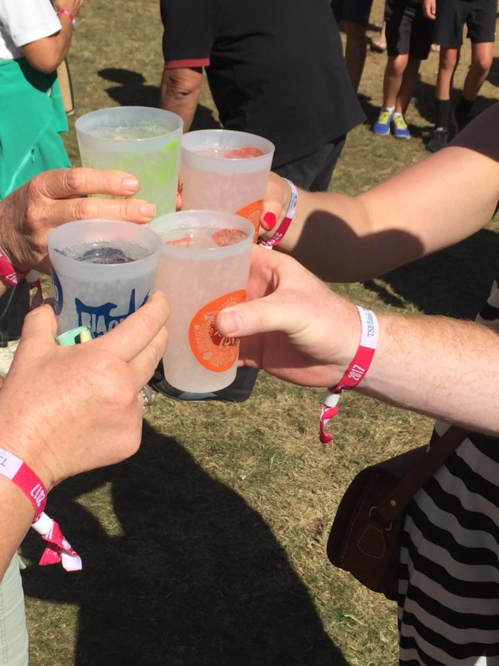 Reusable Cups at Womad Festival