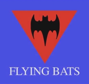 PHOTO: Flying BATS. THE LOGO USED IN THE 1990s.