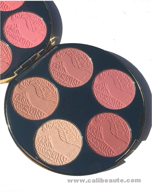 Tarte Blush palette color wheel