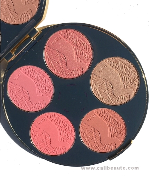 Amazonian Clay Blush Palette Wheel