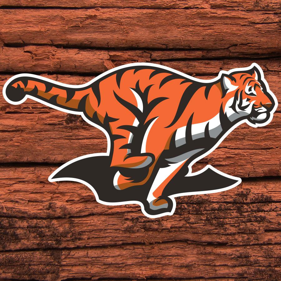 TigerRunning.jpg