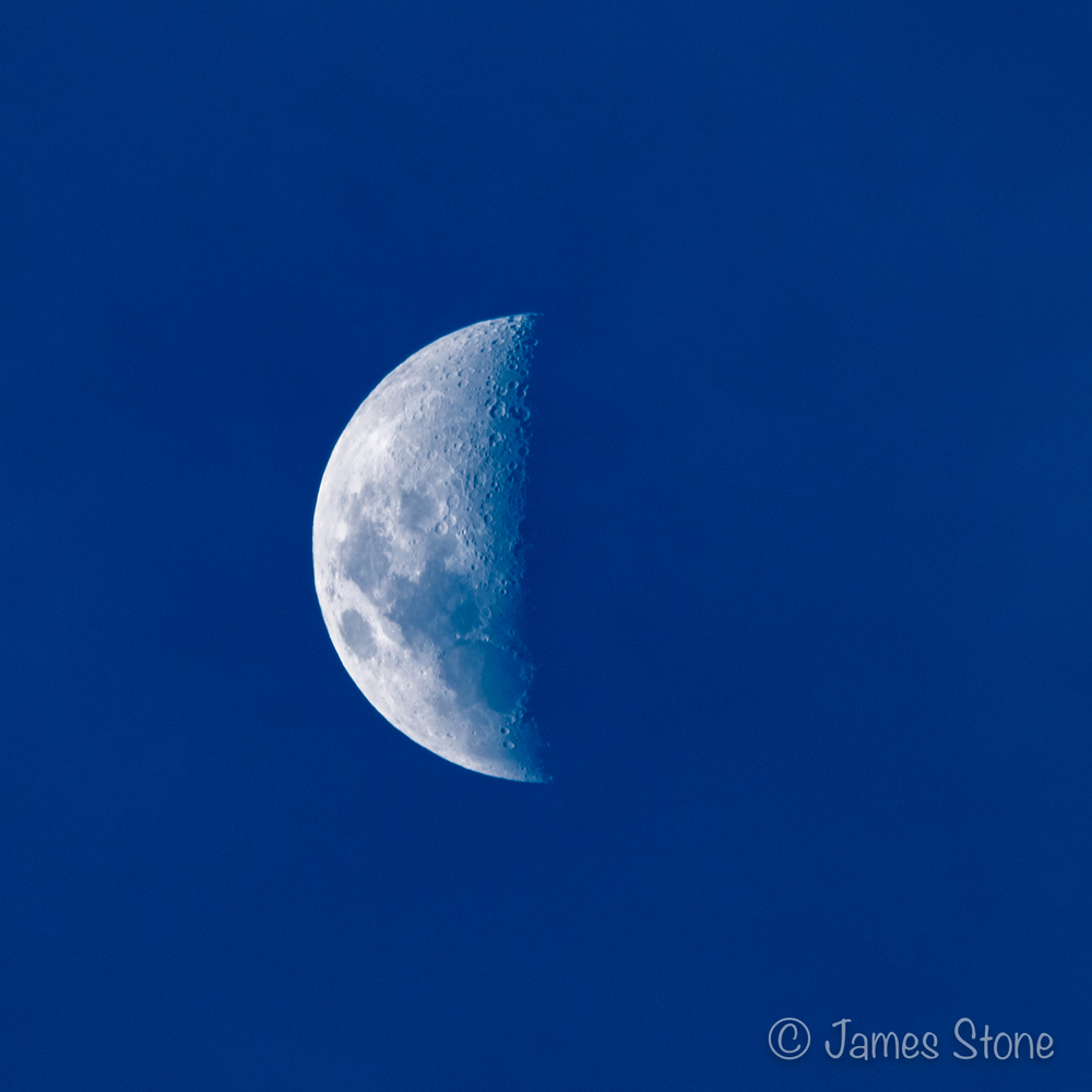 Blue Hour Moon