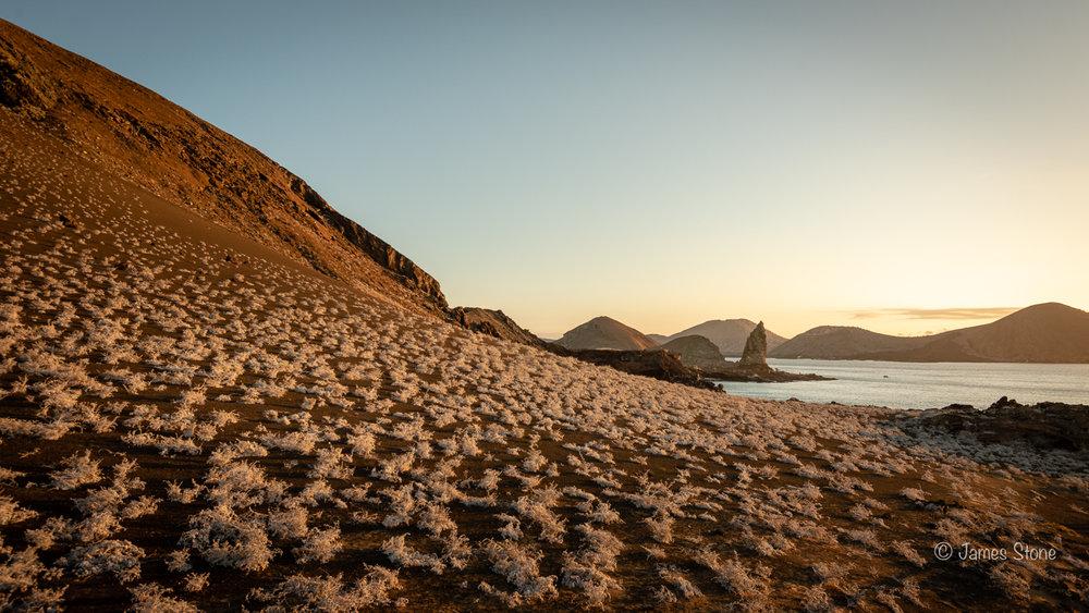 Bartolome Island 2