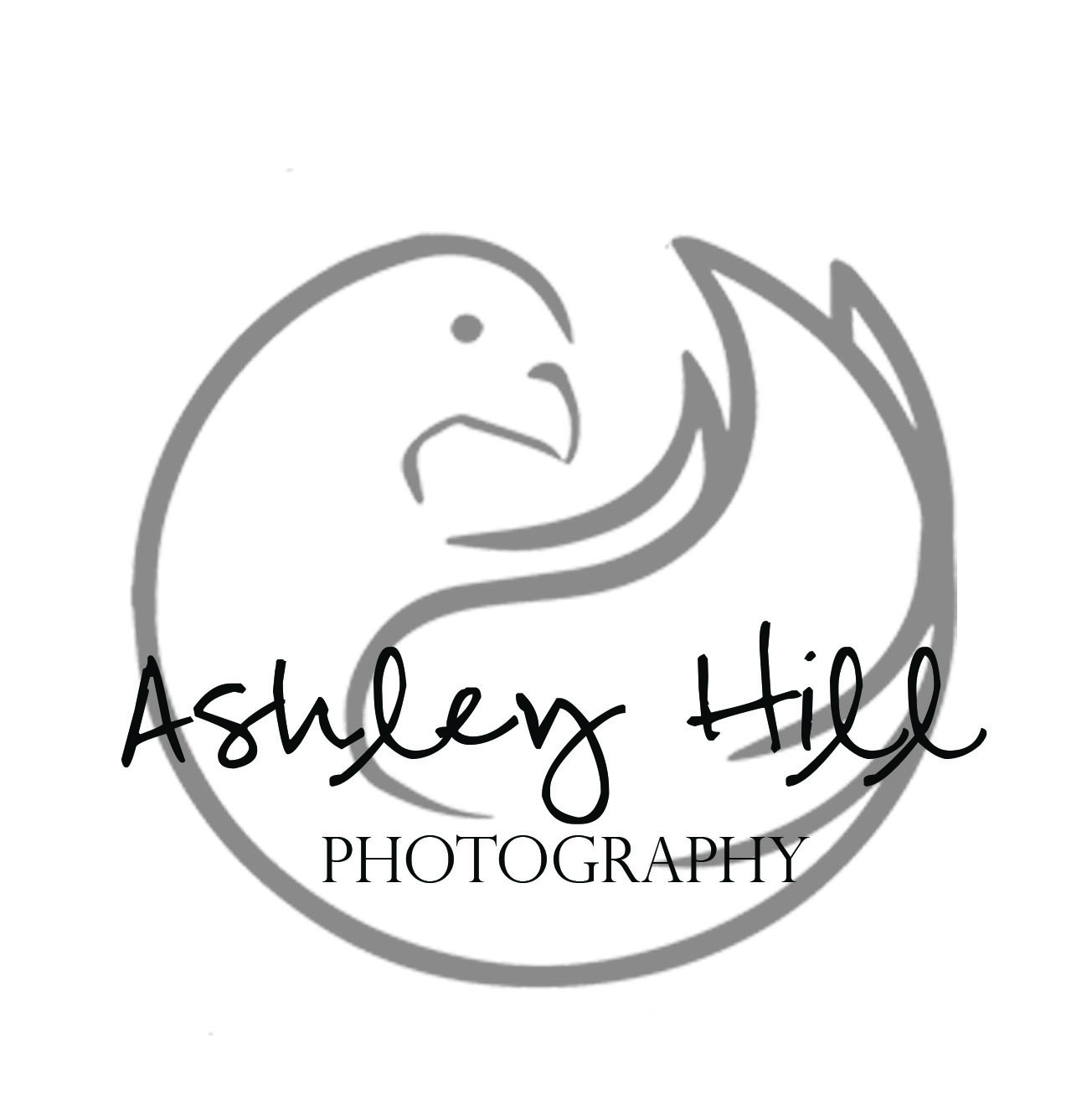 Ashley Hill Photography