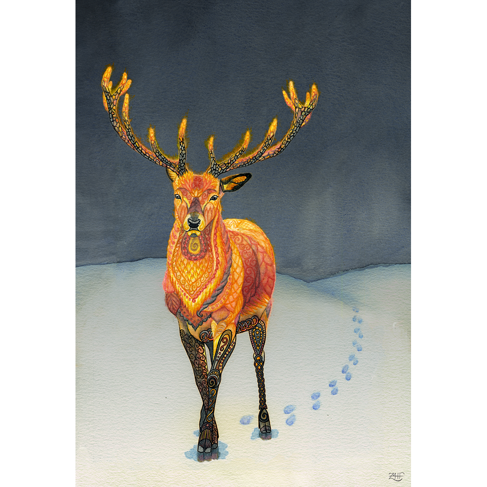 You can tell an elusive Fire Deer has been around because of the distinctive puddles they melt in the snow. Pen, watercolor, and watercolor pencil on watercolor paper, finished digitally in Photoshop.  Shop prints and products on  Society6  and  Redbubble    Reference.