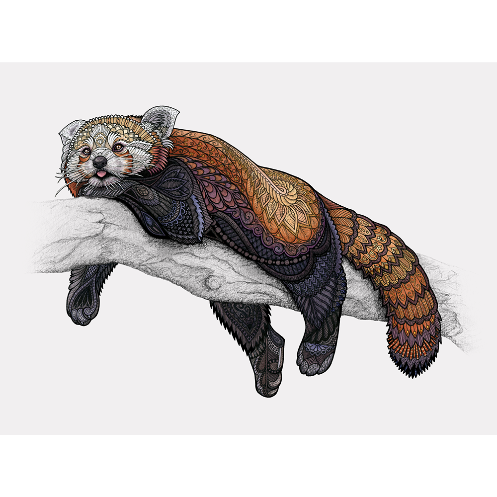 "According to my extremely scientific research, red pandas spend approximately half their time napping in trees, and the other half being astonished by their own fluffy tails.  Pen, pencil, and watercolor on mixed media paper.   Original available for sale - $150, 14"" x 11"" Shop prints and products on  Society6  and  Redbubble"