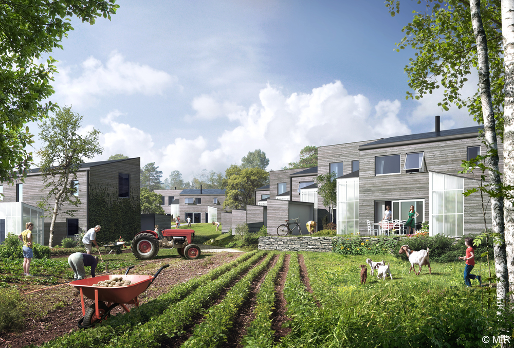 Aktivhus_Ecovillage_Felleskap2 24.0814.jpg