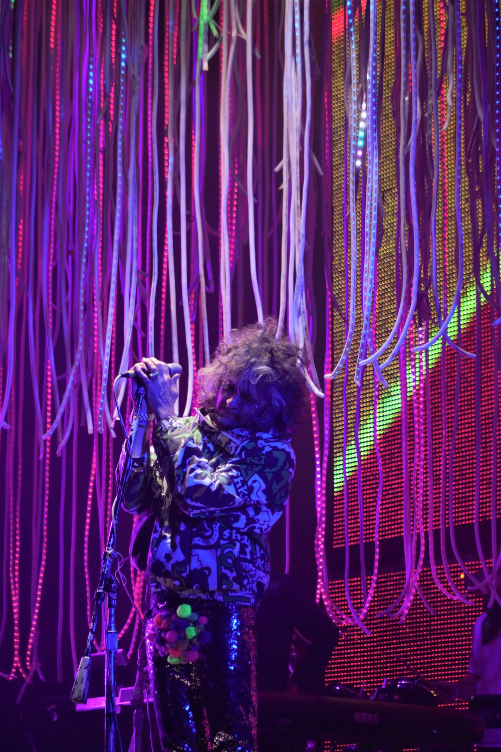 Flaming Lips at House of Creatives Music Festival