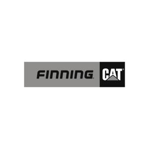 Finning Cat