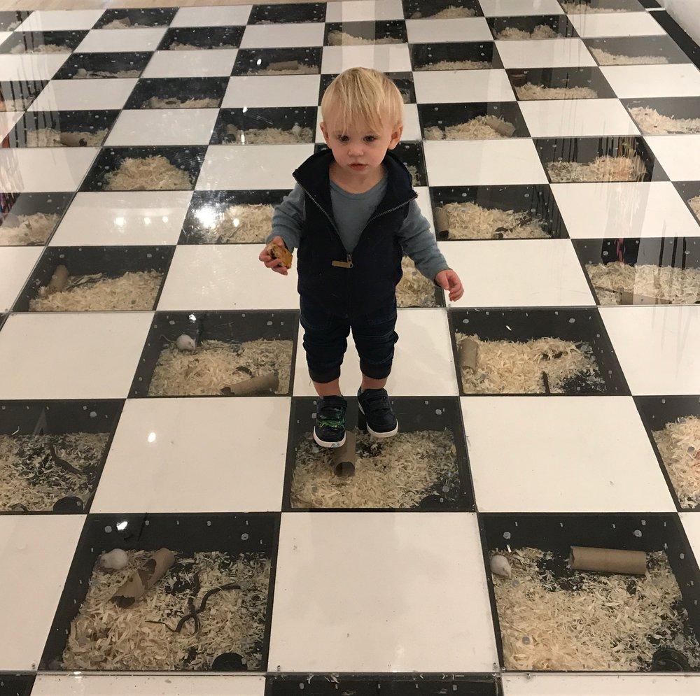 child on the social network.JPG