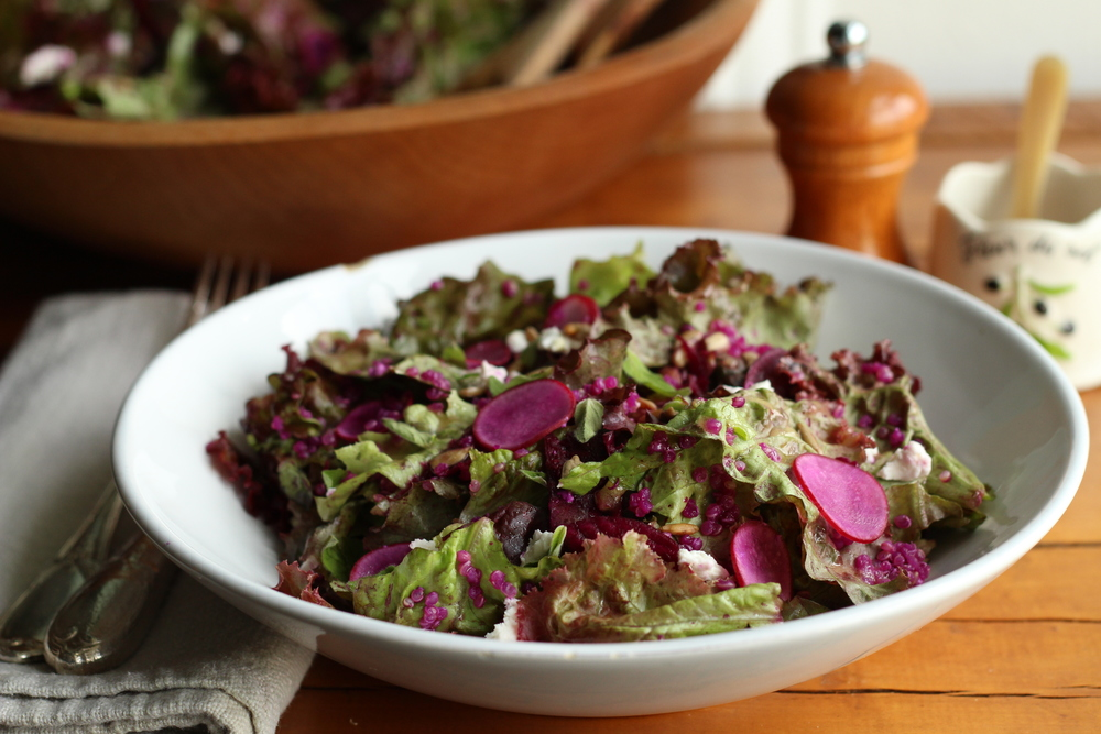 Leafy green salad with quinoa, pickled beets, and fresh oregano