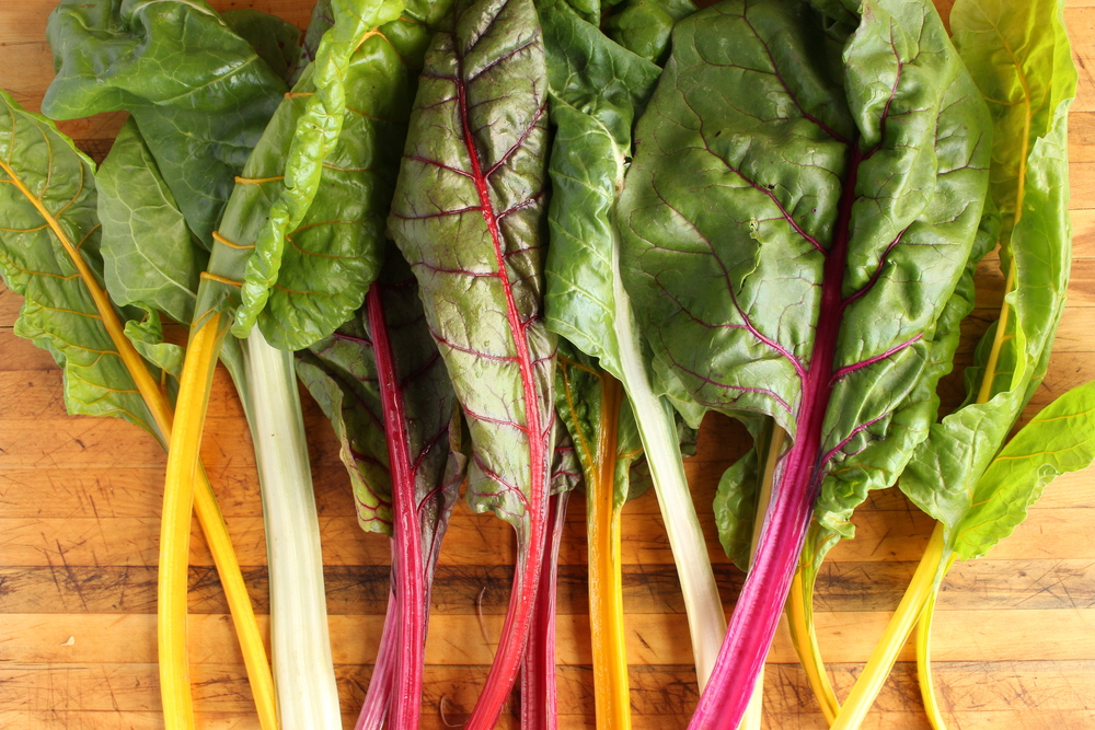 Rainbow Chard from  Mountain View Farm