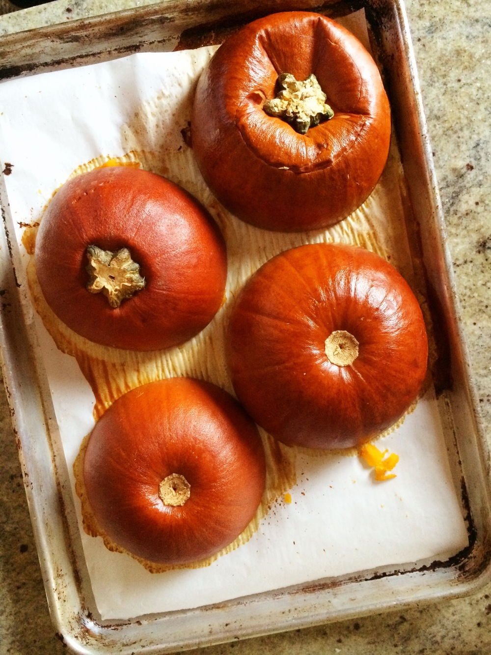 Roasted sugar pumpkin.