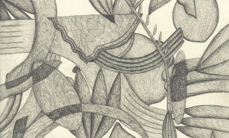 Lilli Carré,  Still from One Second (Eucalyptus) , 2013
