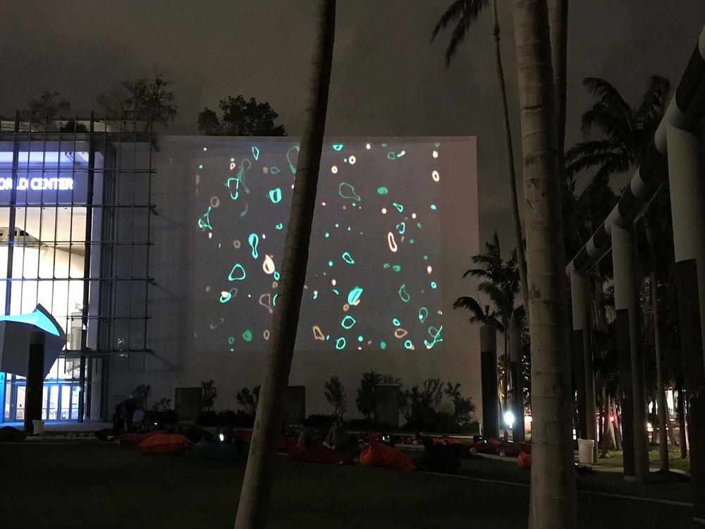 2017_Art-Basel_Miami_07.jpg