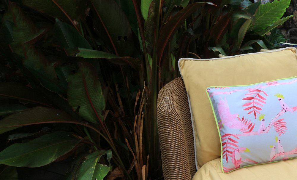 Shop Decorative Pillows