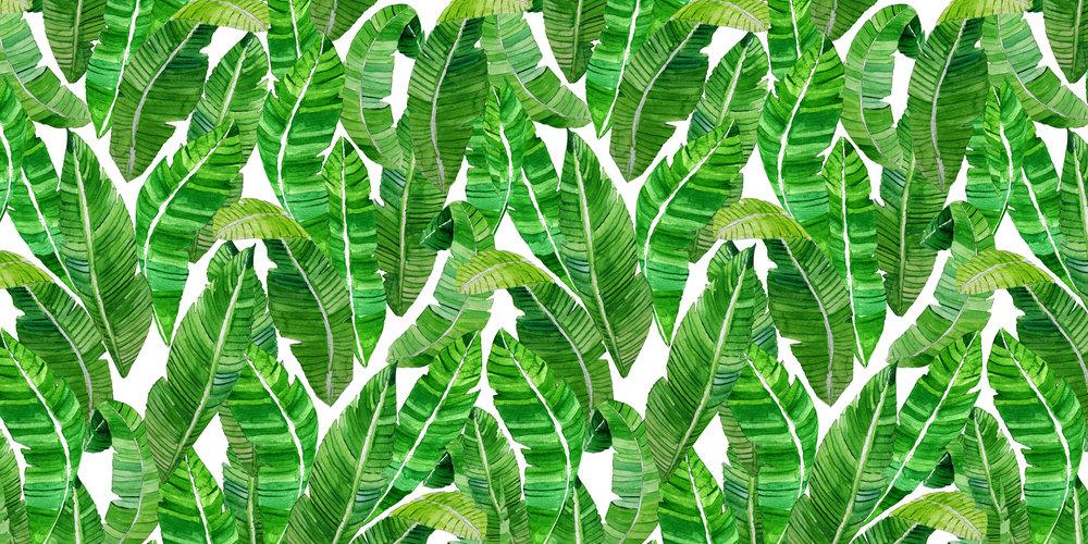 Palm_green_web.jpg